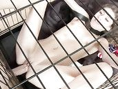 Sex Slave Fucked With A Belt Around Her Neck